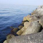 貝塚人工島 沖向きテトラ